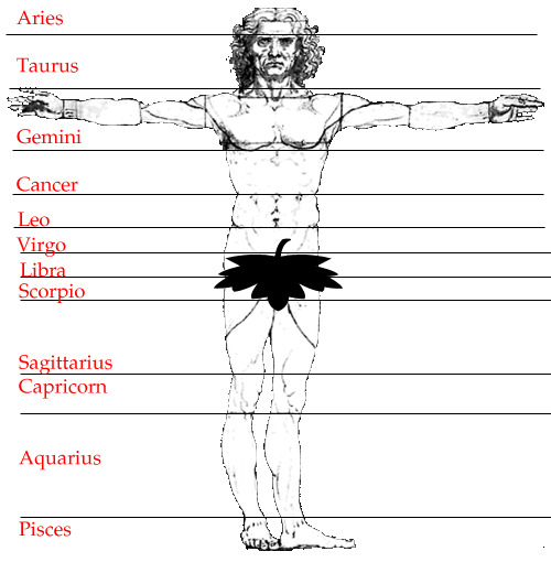 Kalapurush chart brankaastro
